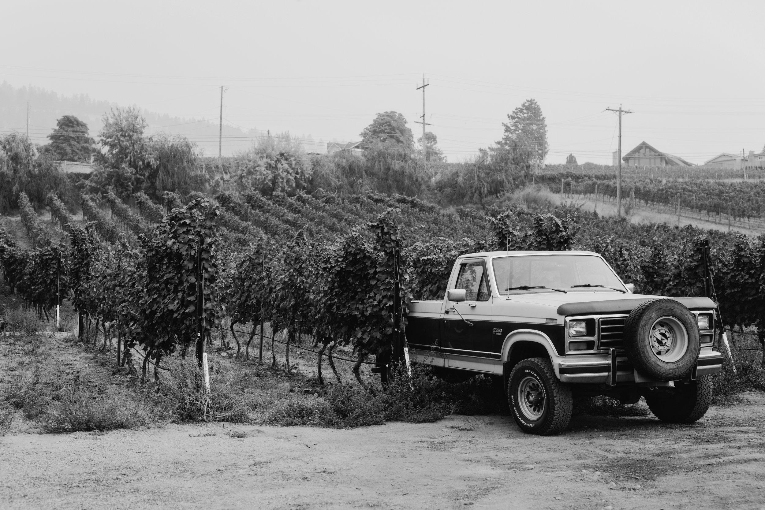 Wine-Touring-0062.JPG