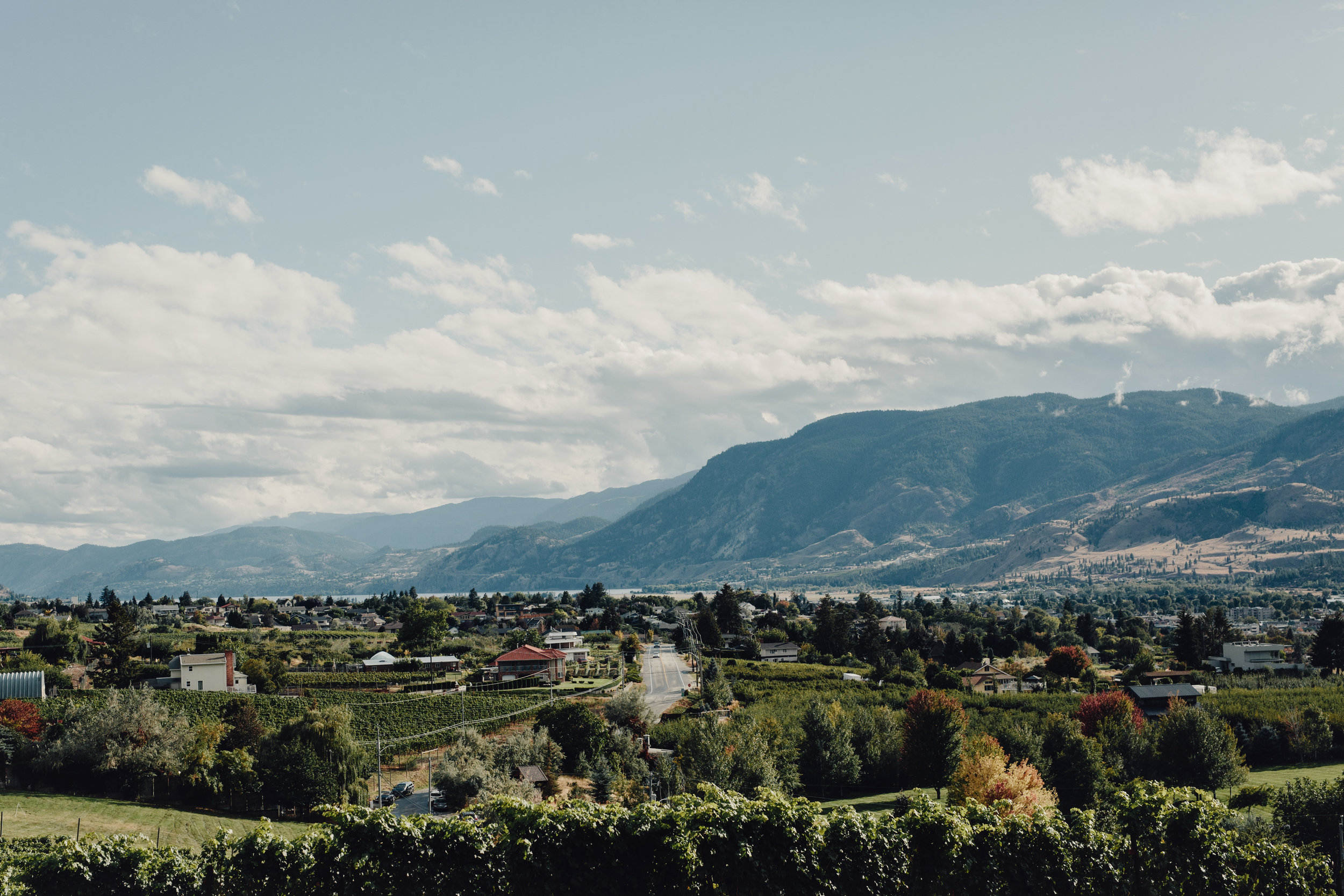 Poplar-grove-wedding-photos-okanagan0041.JPG