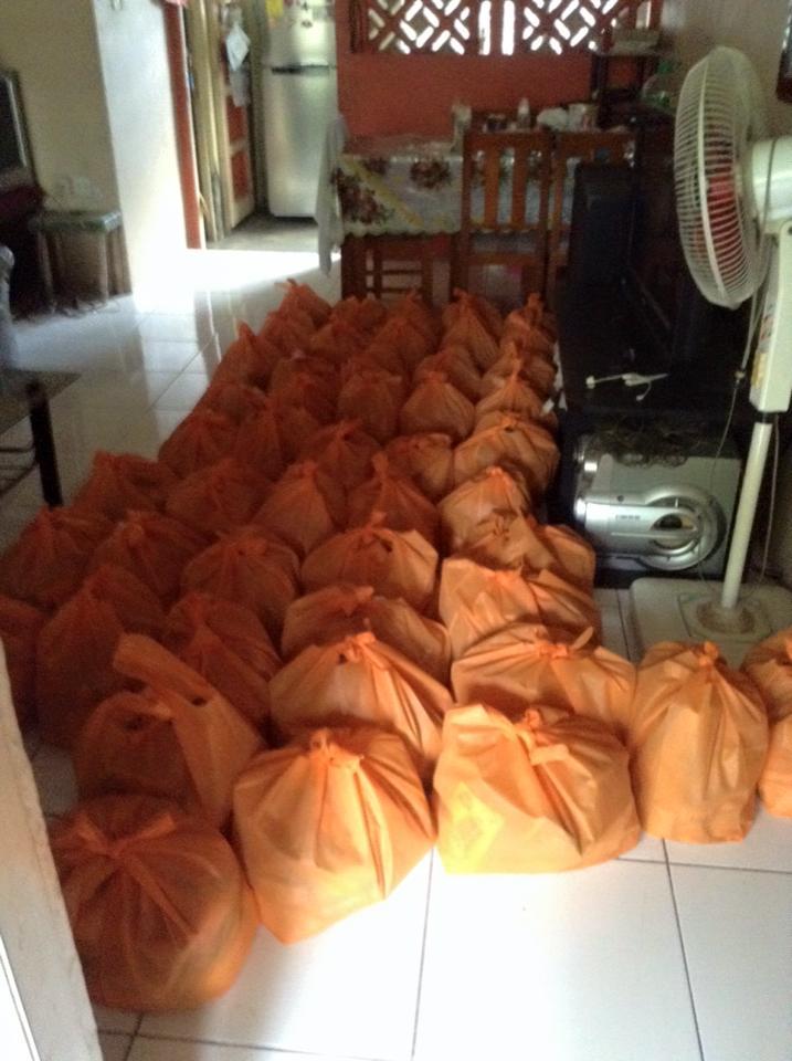 CHP Bagged Groceries.jpg