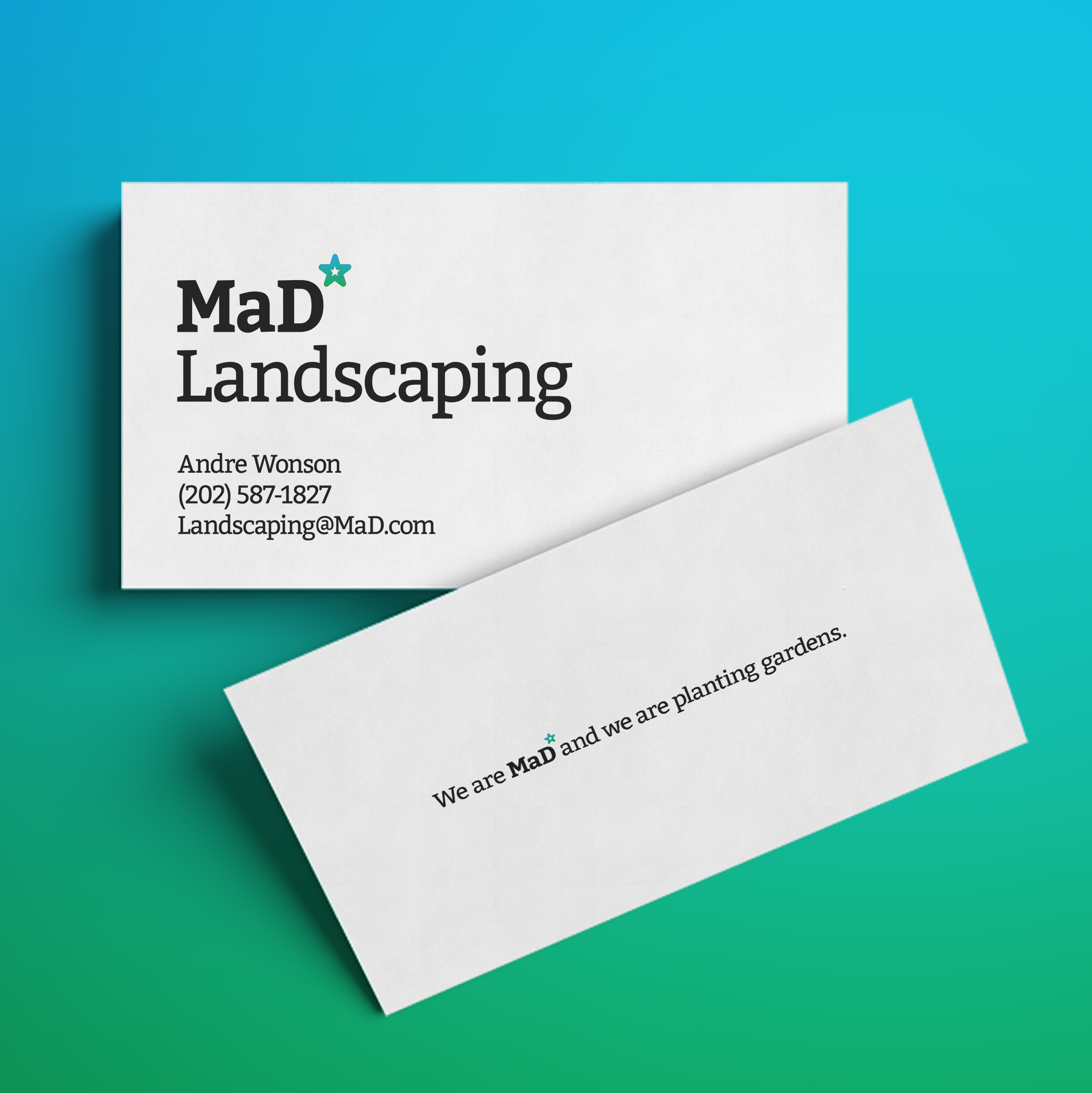 Option 1 Landscaping Business Card
