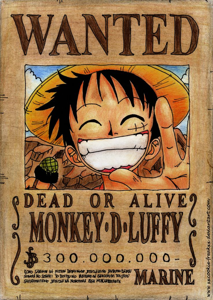 5 Things About Life We Can Learn From Monkey D Luffy Politeasflannels