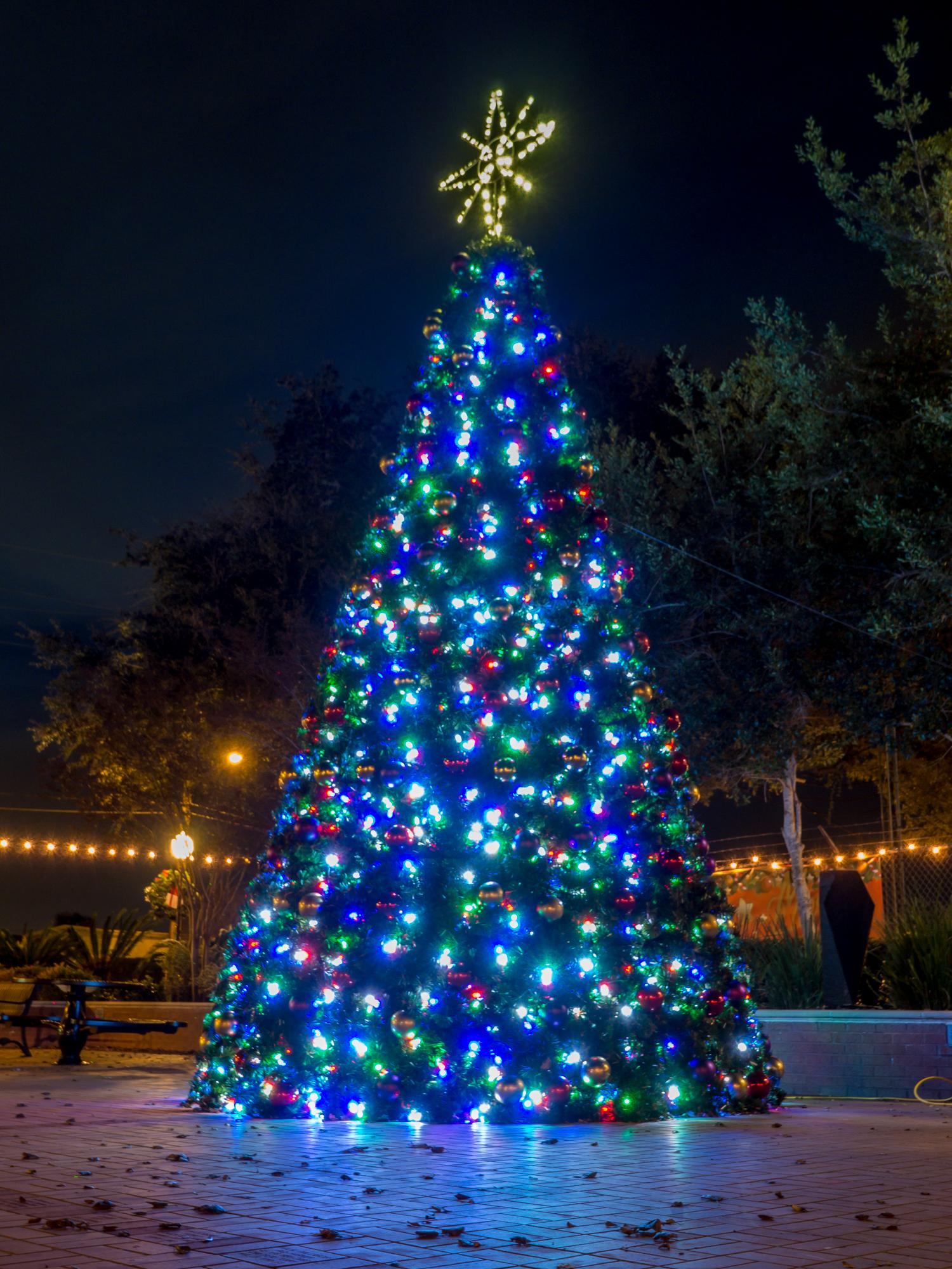 Katy Christmas Lights-2.jpg