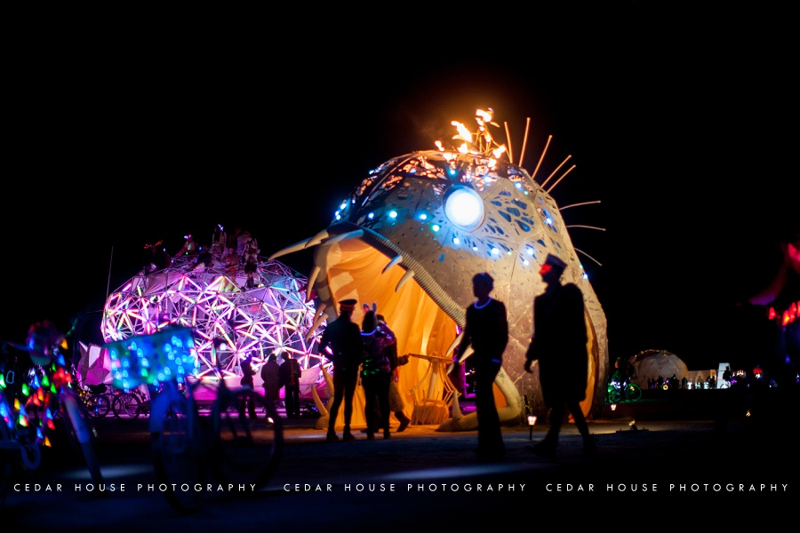 burning man, burning man 2015, playa, playa portraits, burning man photography, burning man photographer, burning man art