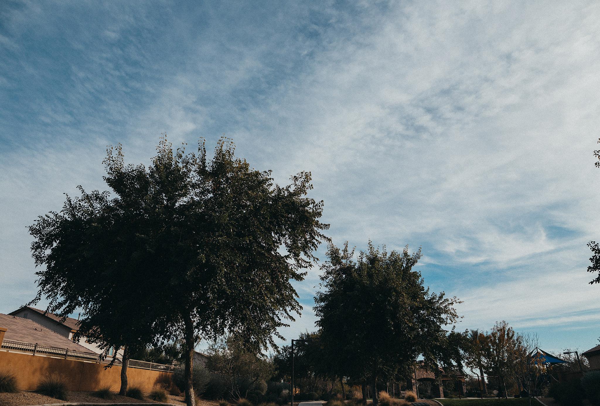 AZ-Park-day-4WEB.jpg