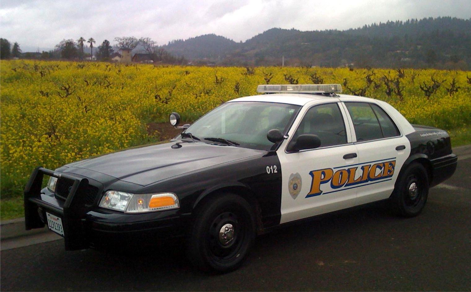 2008_Patrol_car.JPG