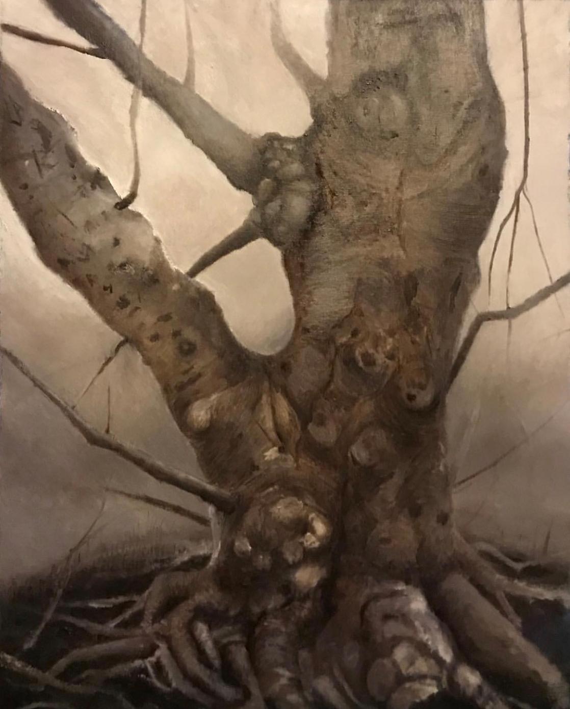 "Tree 16"" x 20"" Oil on Paper"