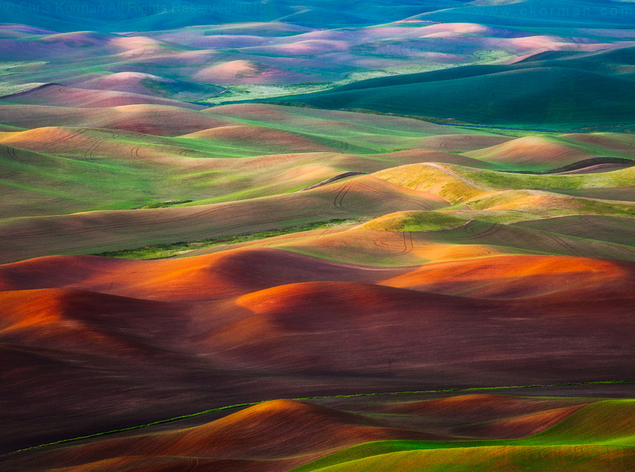 The Hills of Palouse