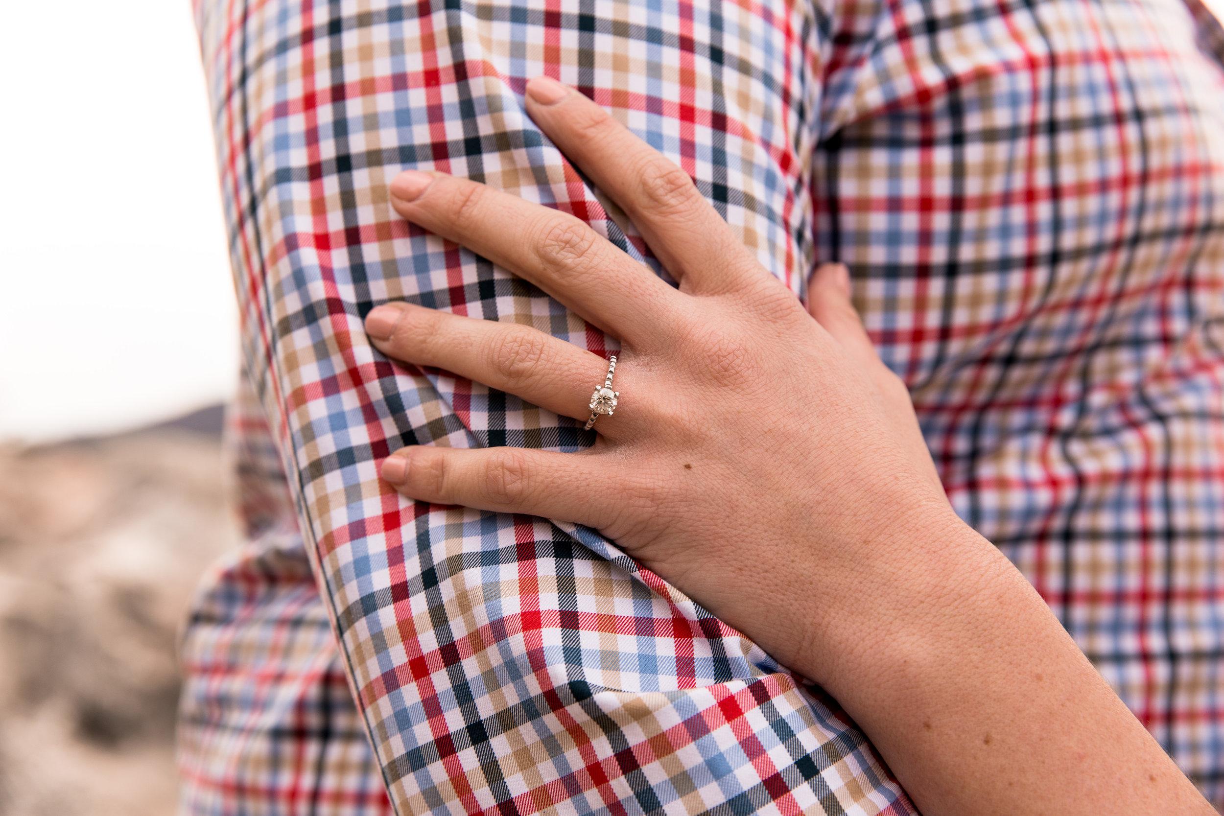 Sarah_Bradford_Engagement-5430.jpg