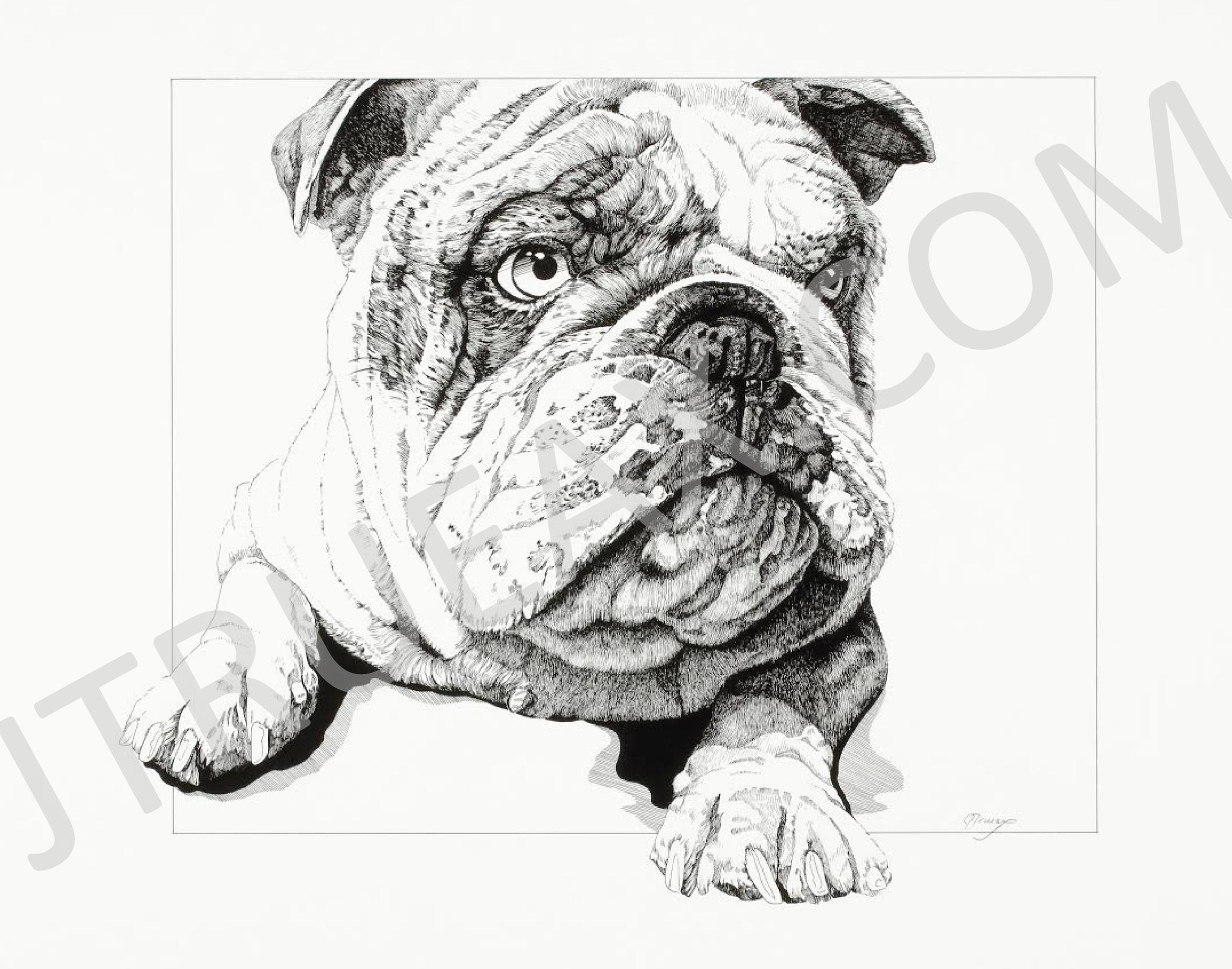 Wrinkles #4