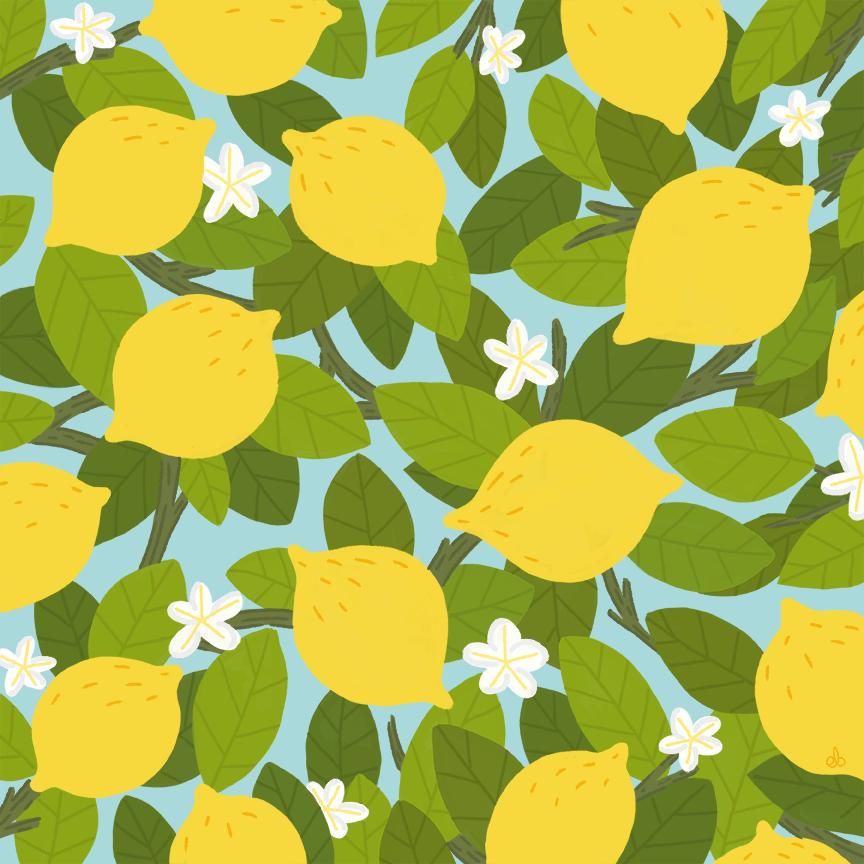 lemons_ebarrera.png