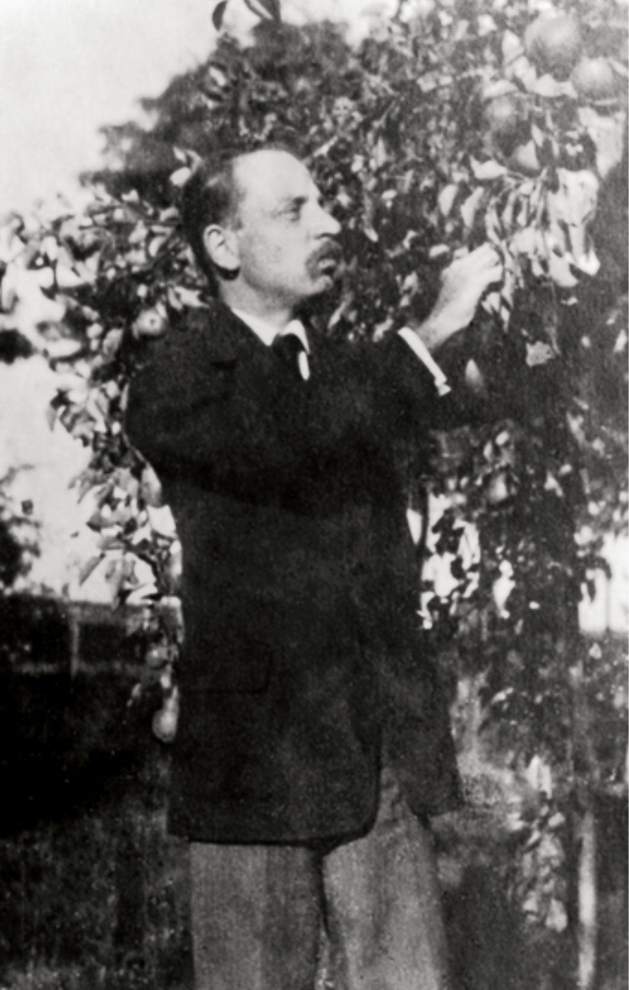 Rilke unter dem Apfelbaum auf Gut Böckel, 1917. Aufnahme von Hertha Koenig.
