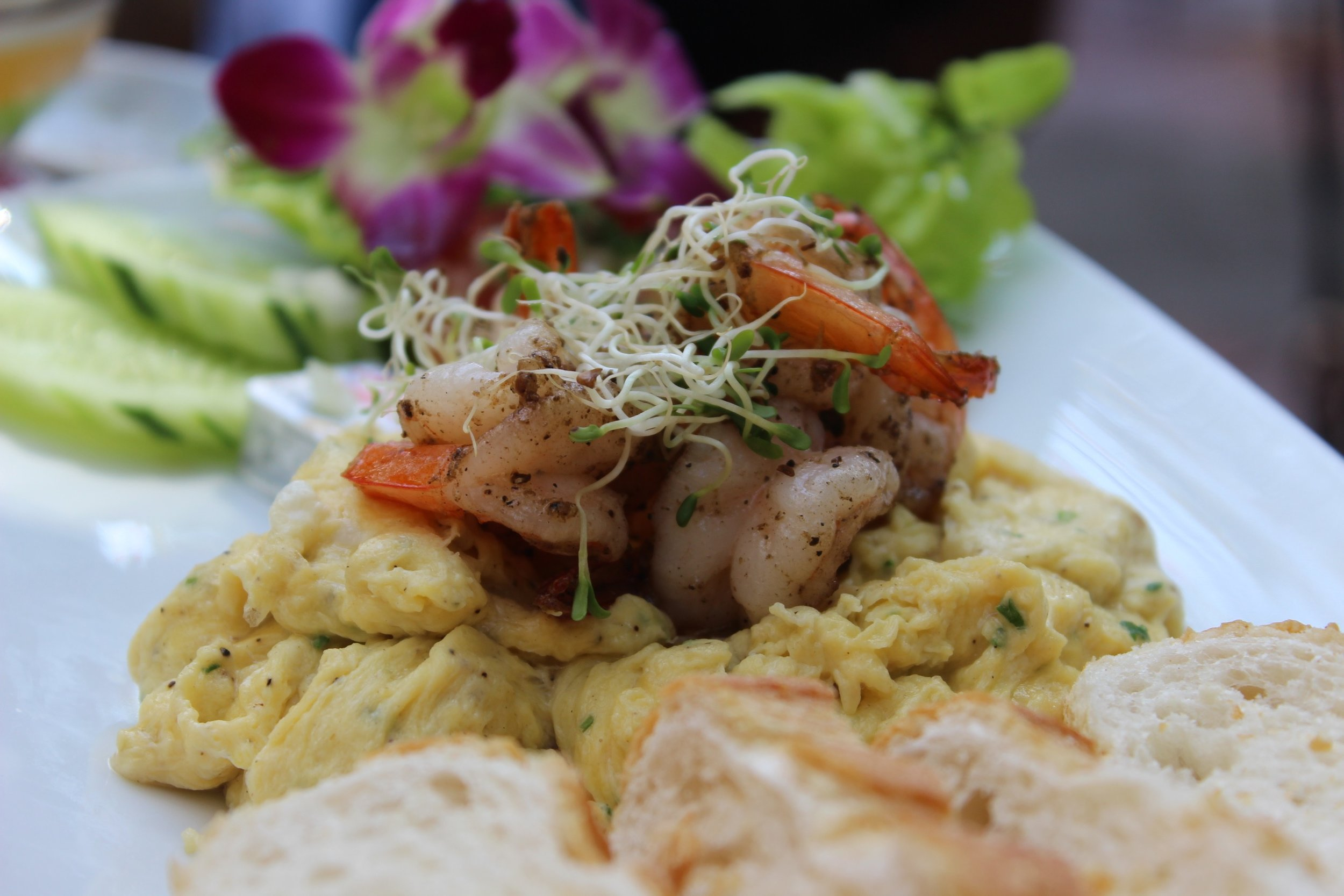 Scrambled eggs and shrimp in Chiang Mai
