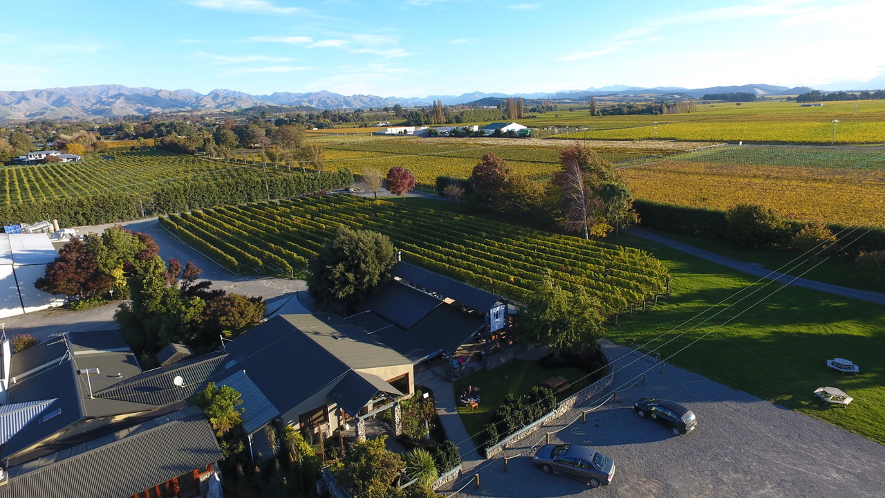 Forrest Winery with the surrounding vineyards in Marlbourough, New Zealand (Photo credit: Forrest wines)