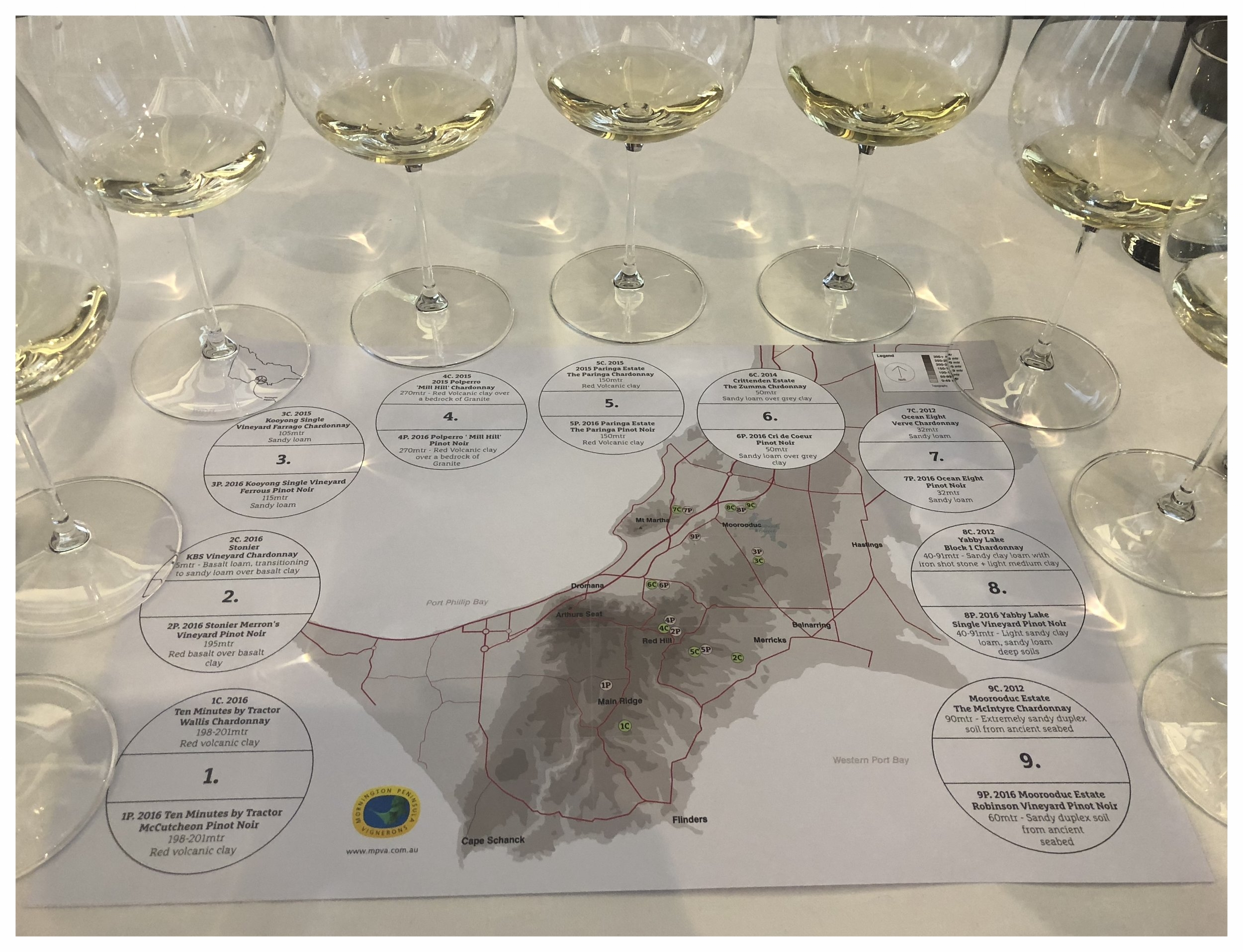 Wine Tasting with the map of Mornington Peninsula (MP) supplied by the MP Vignerons Association  Image: Sumi Sarma