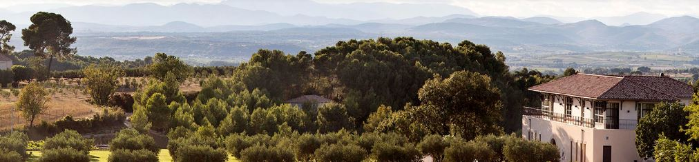 Panoramic view around Domaine Paul Mas - Pyrenees at the back drop and the chalky garrigue mediterranean vegetation (Image: Domaine Paul Mas)