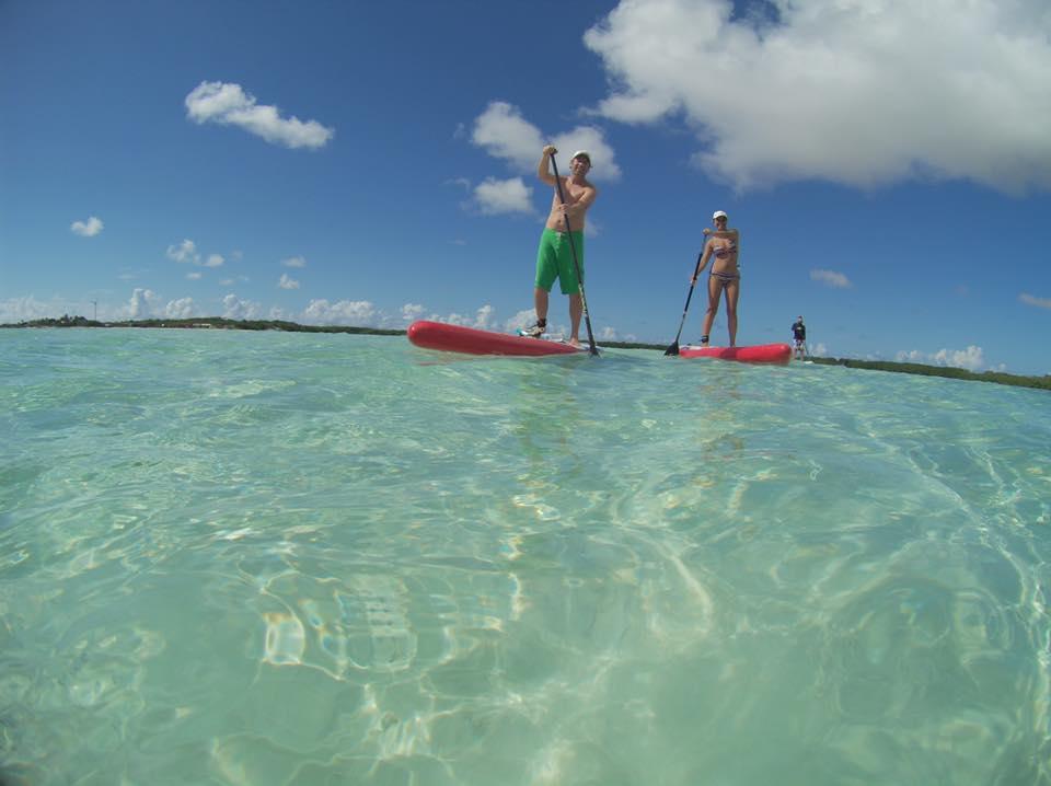 Bonaire mangrove paddle tour