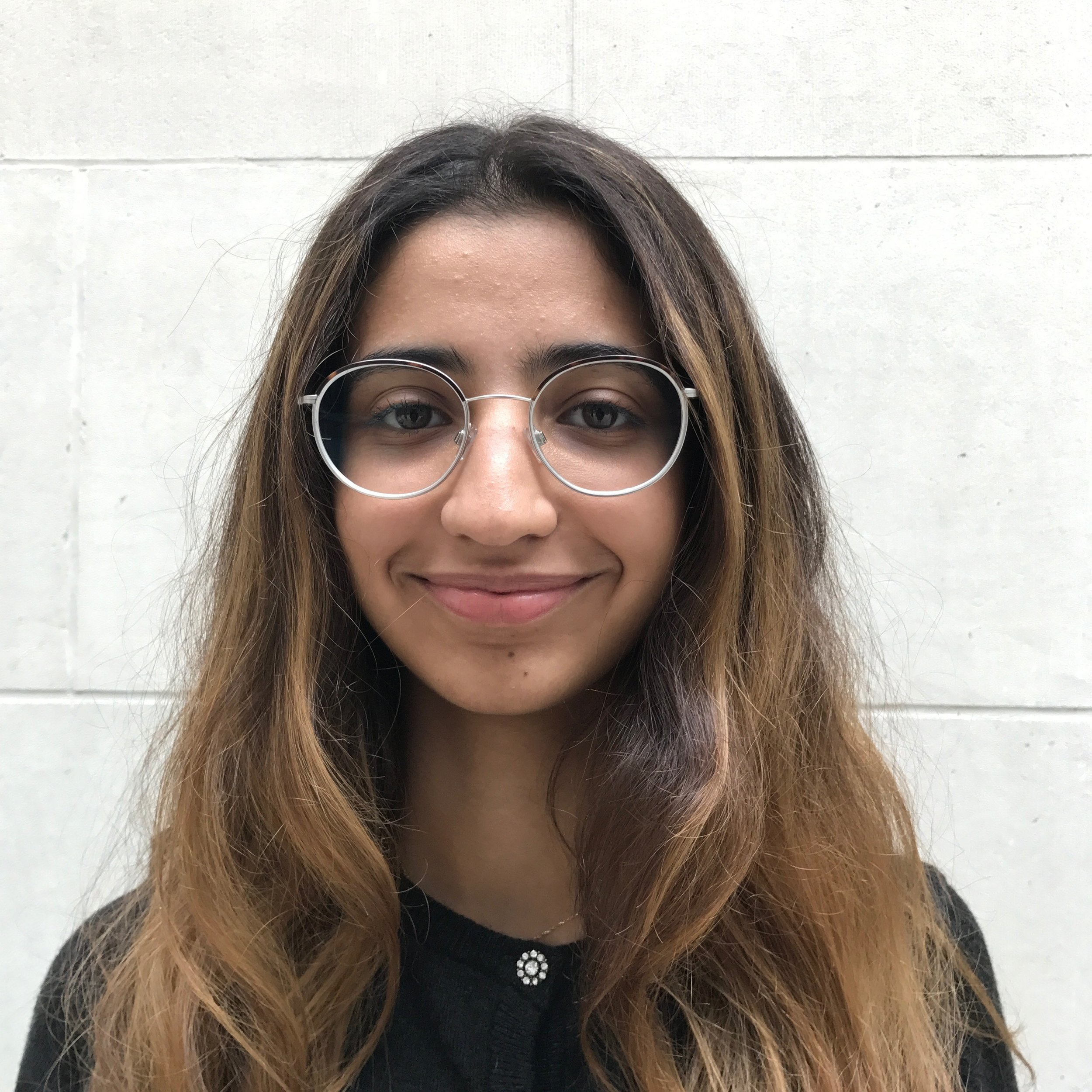 PRO BONO OFFICER - SARA ALQAMISH - I am an LLB finalist at SOAS and the present Pro Bono Officer of the SOAS Law Society.  Through this position, I hope to provide students with possibilities to develop their interests in working in pro-bono related opportunities or aspiring for human rights-related careers. As President of Lawyers without Borders Student Division at SOAS this year, I hope to use both of my roles to make liaising with the management more efficient. For instance, we are currently working on setting up a Law & Innovation Clinic. We also have a number of potential events to hold, including a talk by lawyers from the Freedom of Torture organization in London. At SOAS, I am also involved as the Senior Editor of the SOAS Law Journal and helped start up the SOAS Francophile Society.