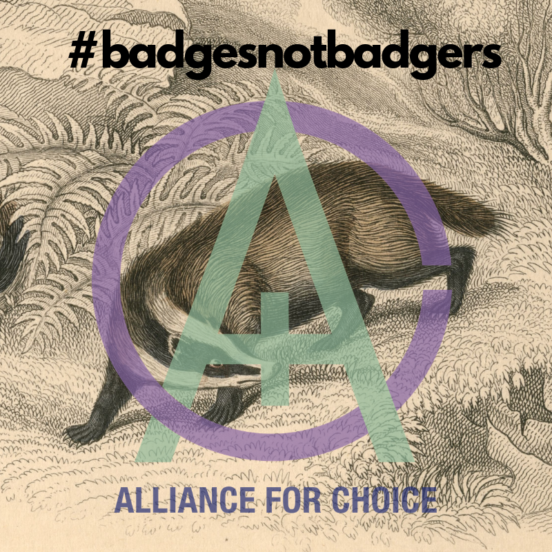 badgerbadge.png