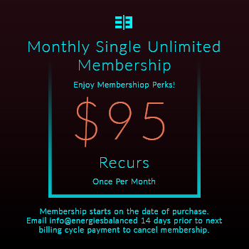 Website Pricing Option - Image - Monthly Single Unlimited Membership - $95.00 - 350px by 350px.jpg