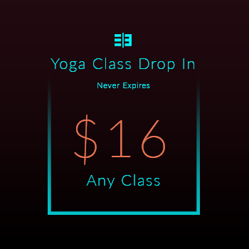 Website Pricing Option - Image - Yoga Class Drop In $16.00 - 350px by 350px.jpg