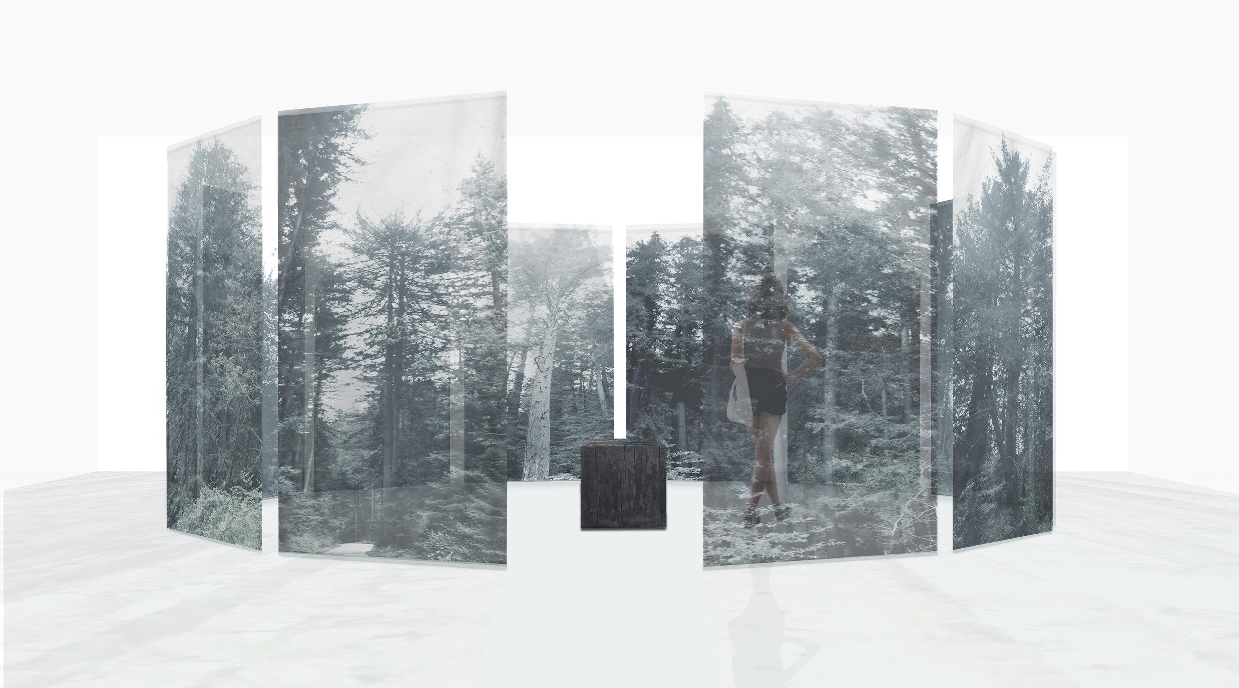 hi res cathedral 20180320_Tree w wood w p.jpg