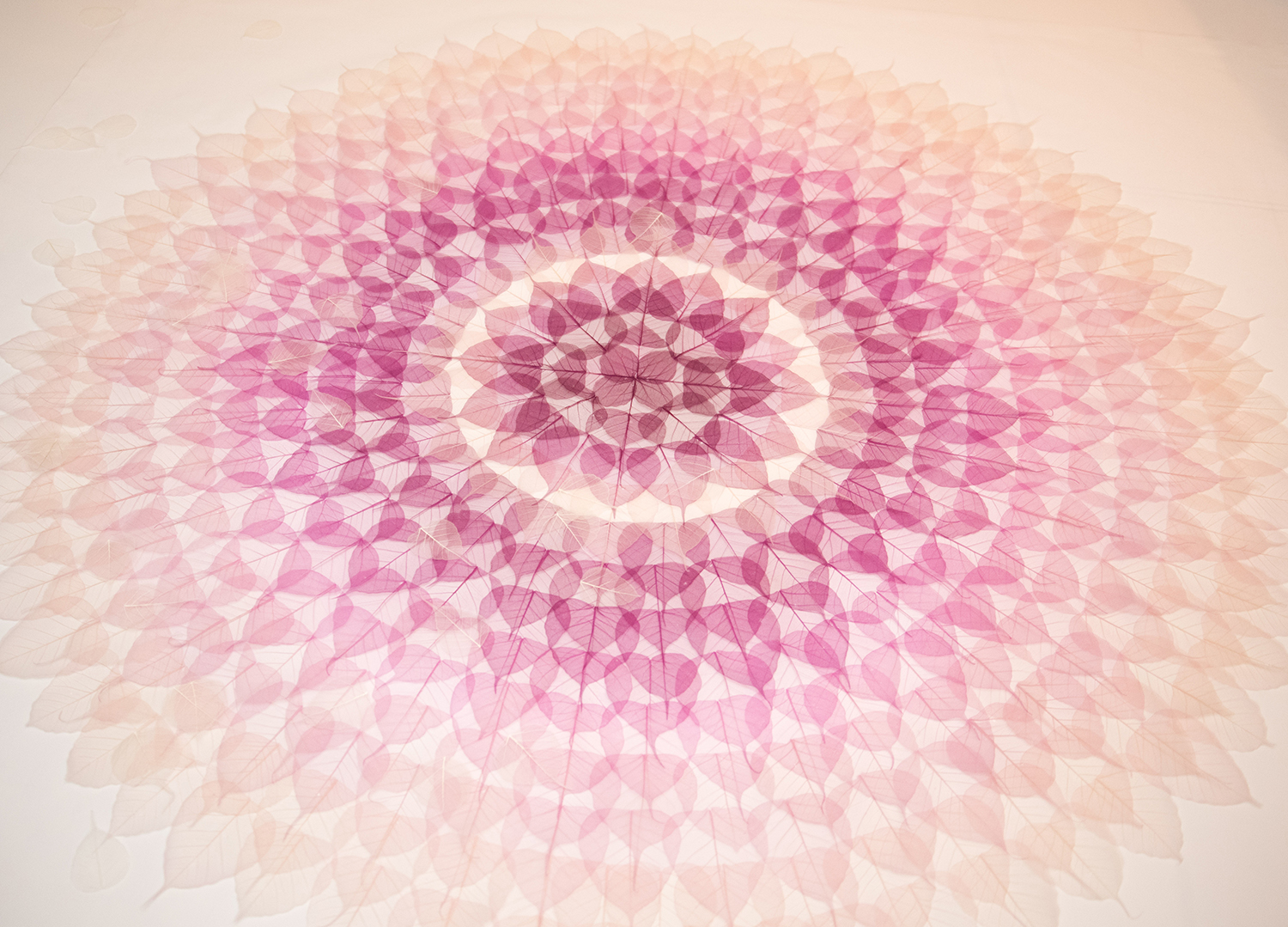 """WISHING MANDALA FOR THE LOTUS CIRCLE,"" THE ASIA FOUNDATION, SAN FRANCISCO 2019"