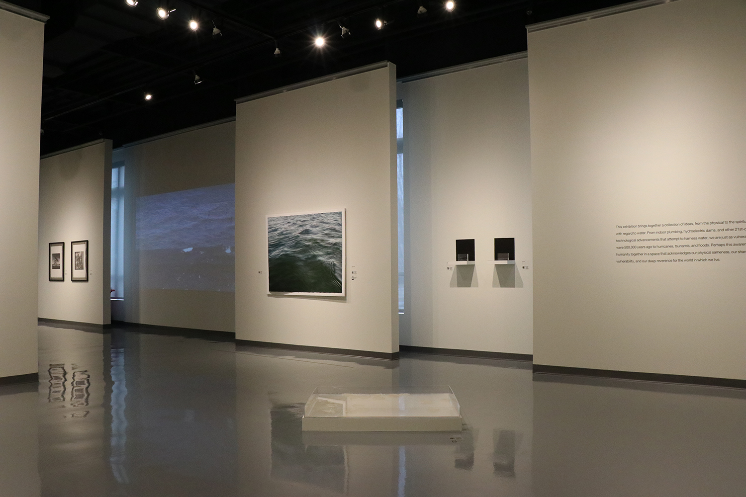 SPARTANBURG ART MUSEUM , SOUTH CAROLINA IN THEIR ELEMENT 2018  EXHIBITION  INFO