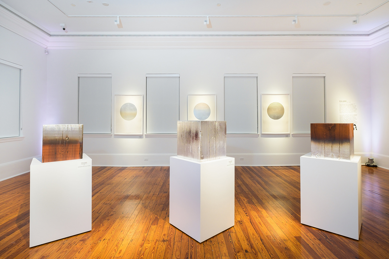 CORNELL MUSEUM OF ART, DELRAY BEACH, FLORIDA  LOOKING GLASS 2017  EXHIBITION INFO