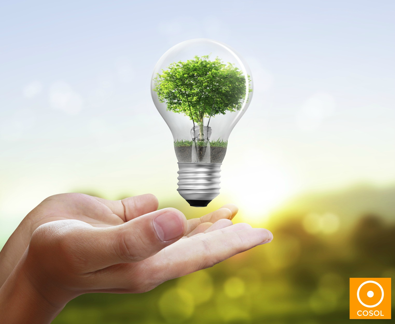 energia sustentavel + preservacao ambiental + cosol