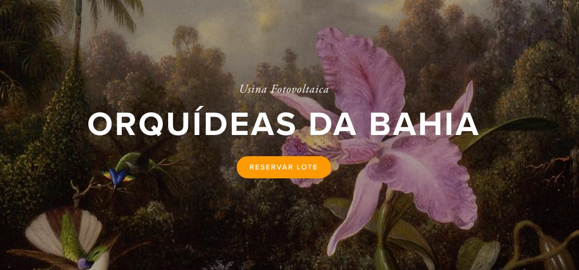 usina orquideas bahia.png