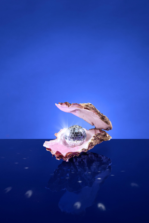 Oyster staand voor web.jpg