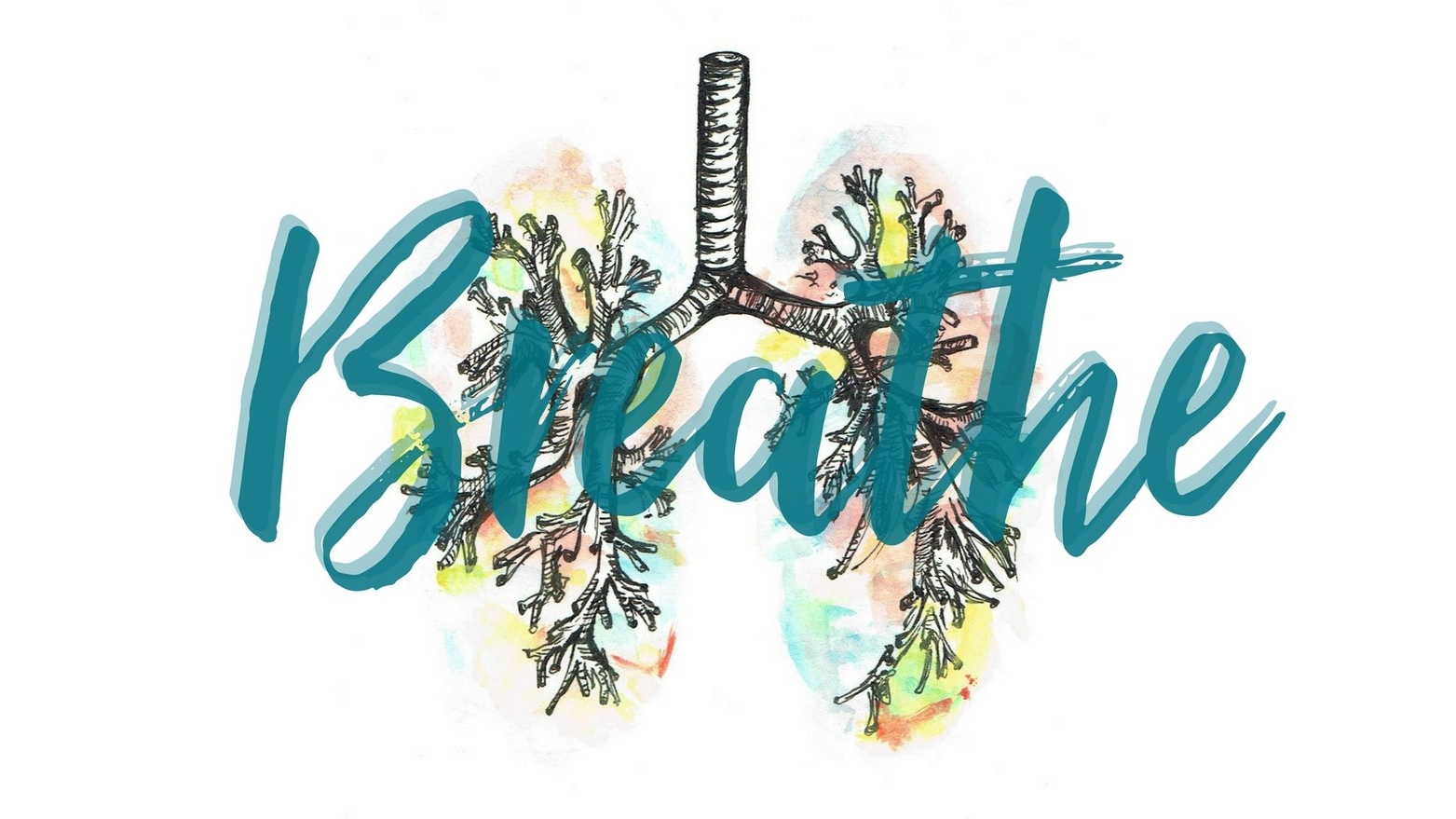 "Illustration Credit: "" Watercolour Anatomy: Lungs "" by  Chemical-Adventures  from  Deviant Art"