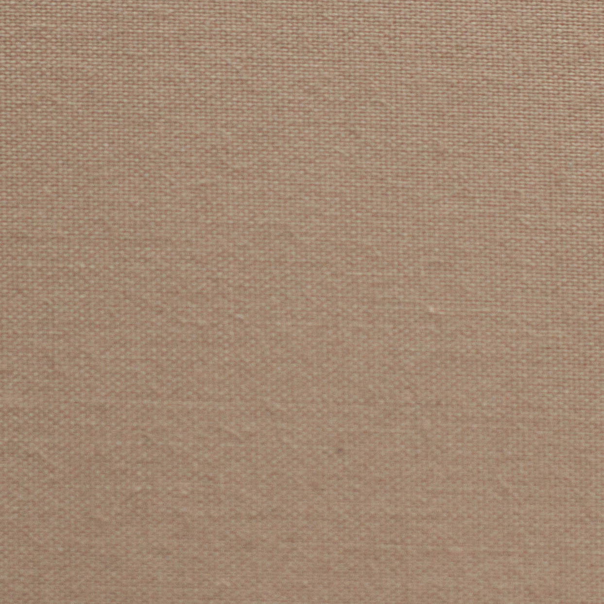 Cotton - taupe - CT 221