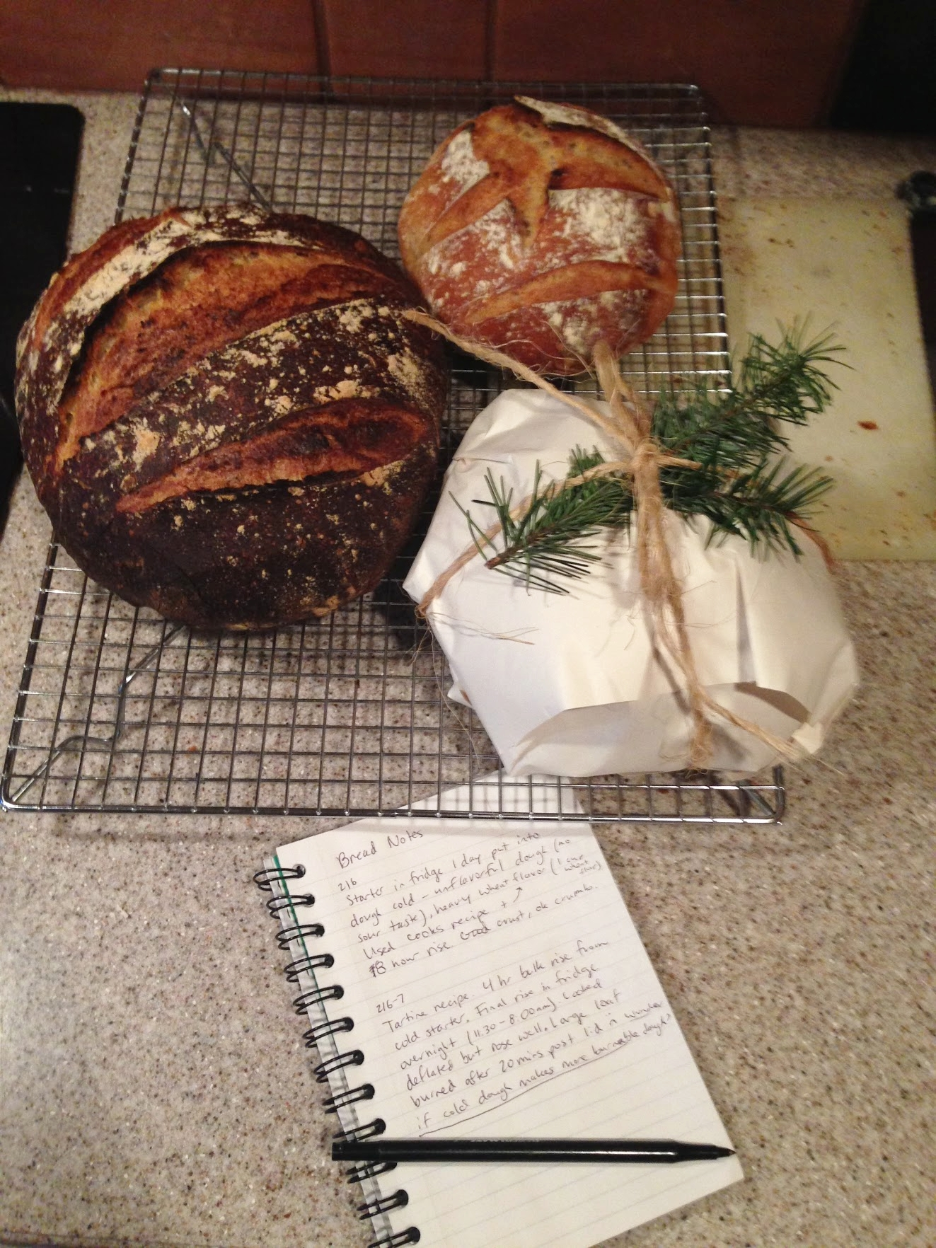 Tartine bread (one loaf gift-wrapped for a friend) and my bread journal