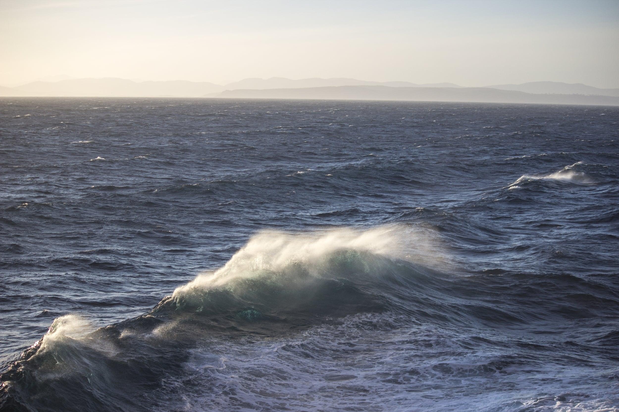 Ocean rhythm. Tasman Sea.