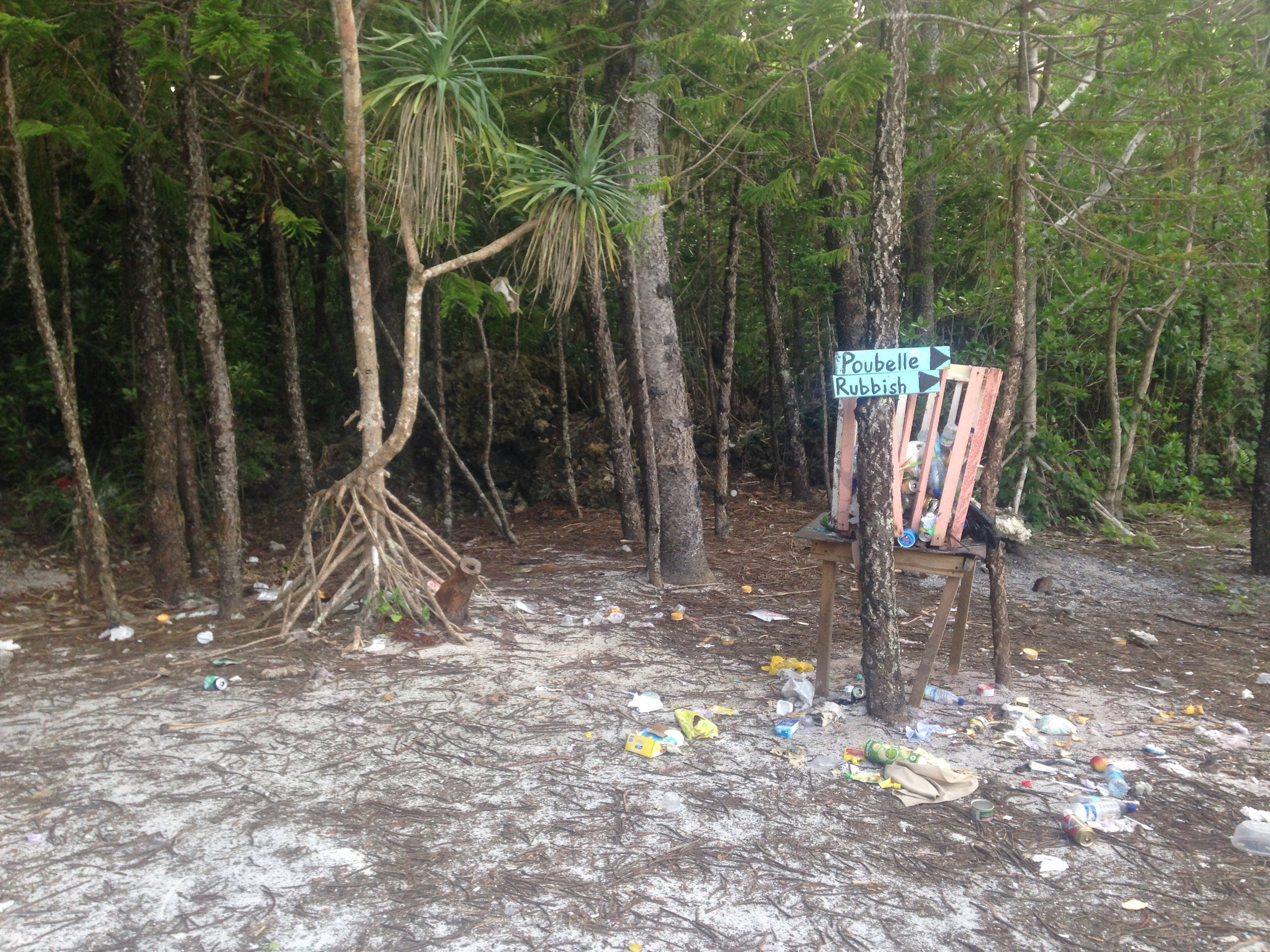 Disposal of the indisposable. Isle of Pine, New Caledonia.