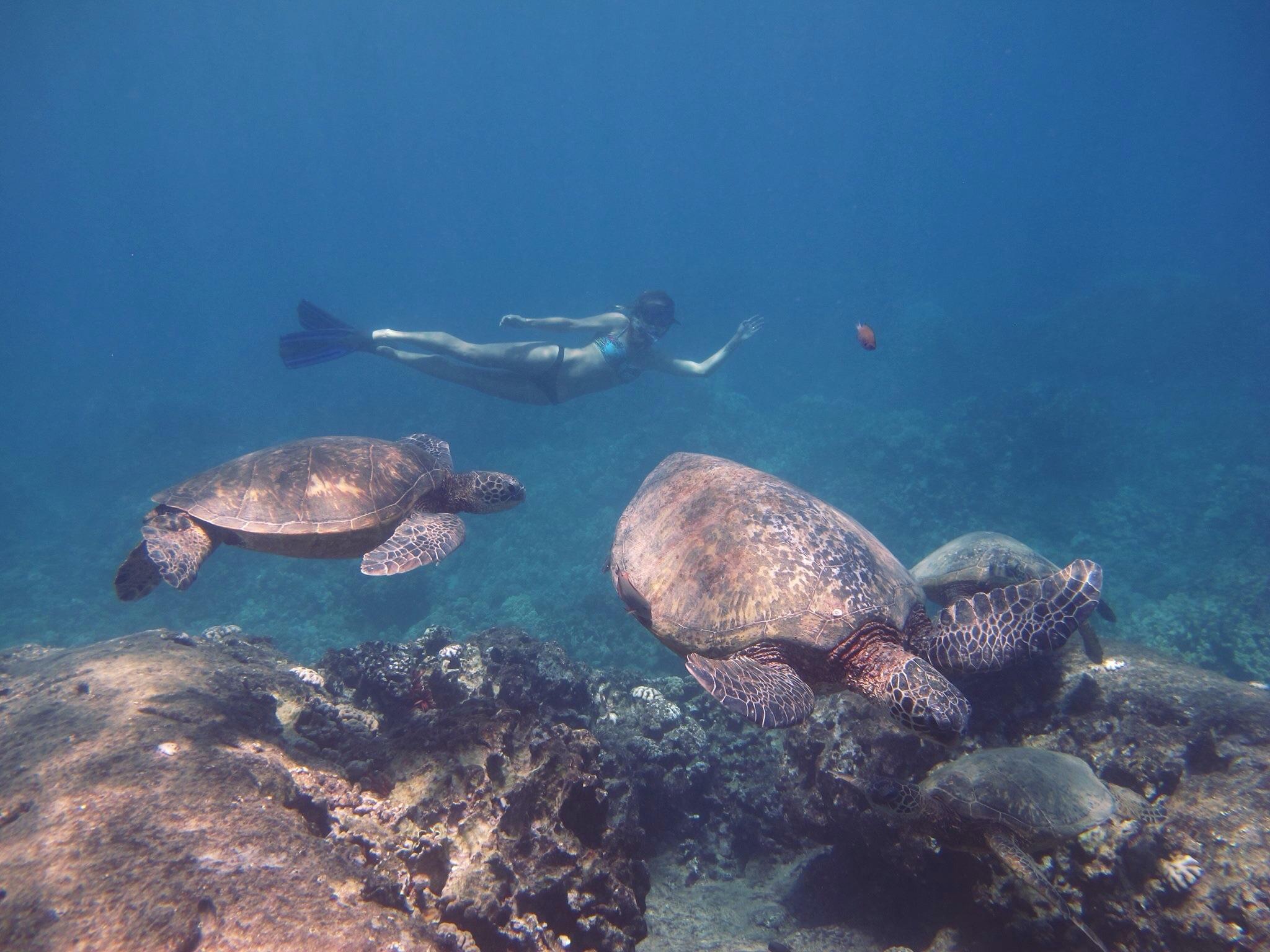 Getting my fill of ocean inspiration. Oahu, Hawaii. Photo:  Gadea Pérez-Andújar