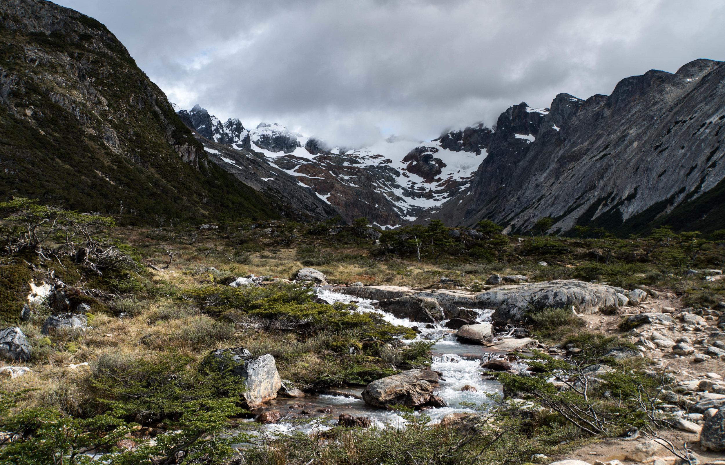 Peat bogs surrounding the drainage of Laguna Esmerelda. Ushuaia, Argentina.