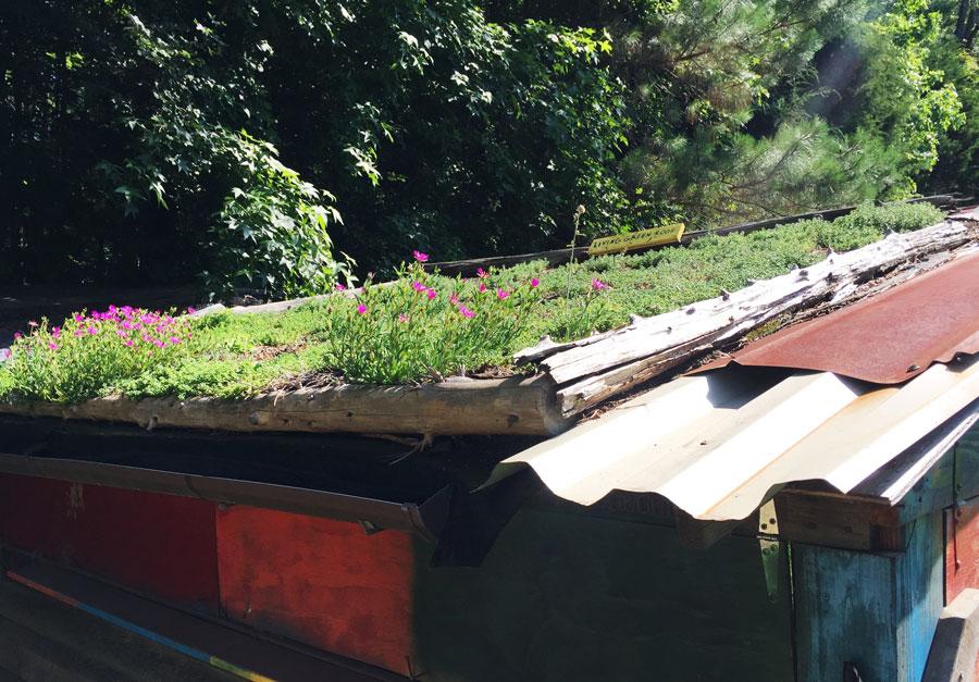 Hub-Farm-Green-Roof.jpg
