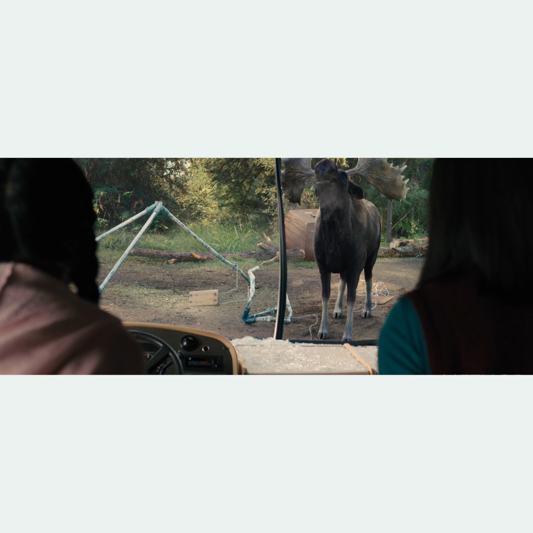 farmers_moose_screenshots_00002.jpg