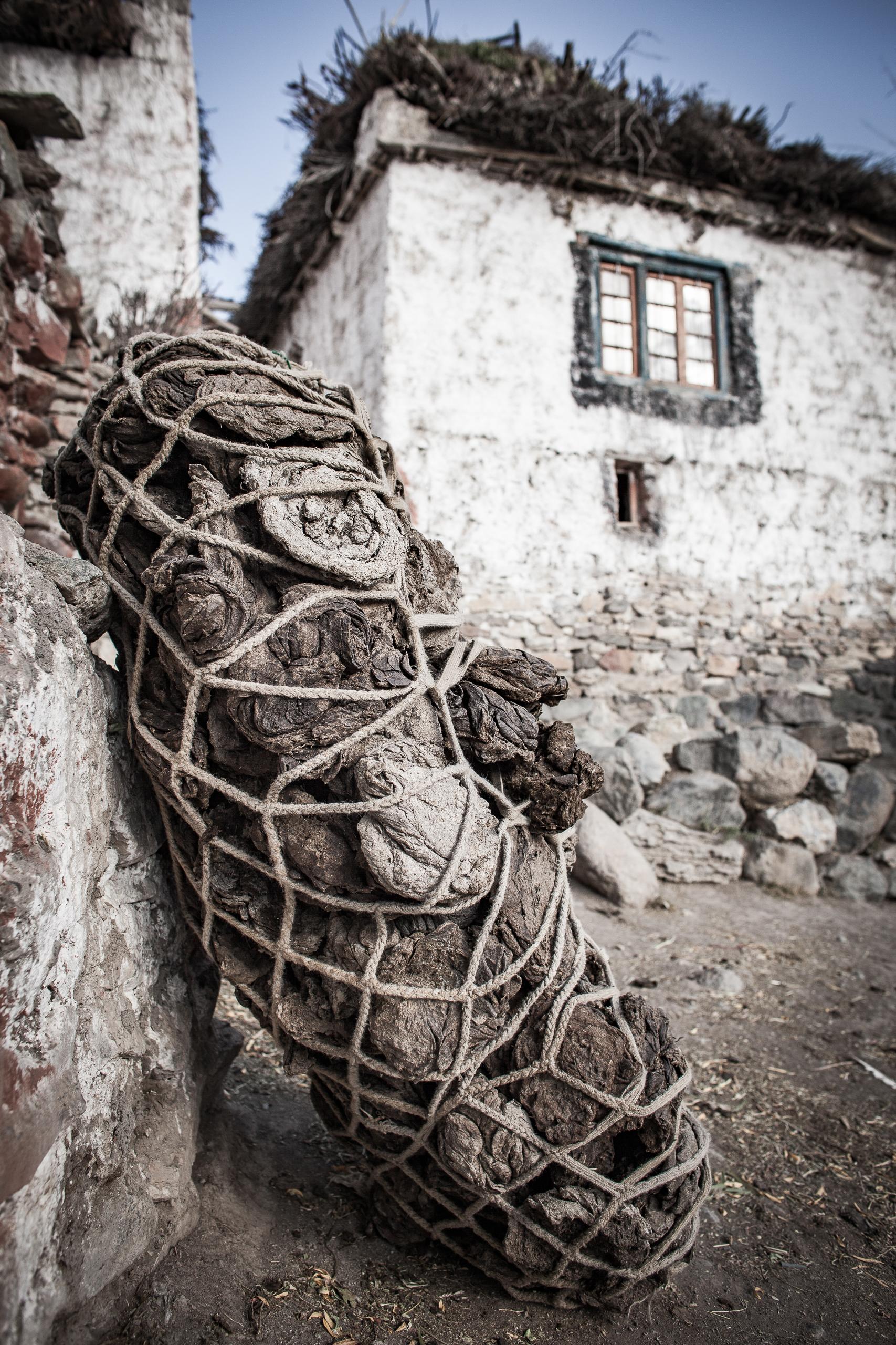 Gaudenz Danuser, Photoskar, Ladakh India IMG_2339.jpg