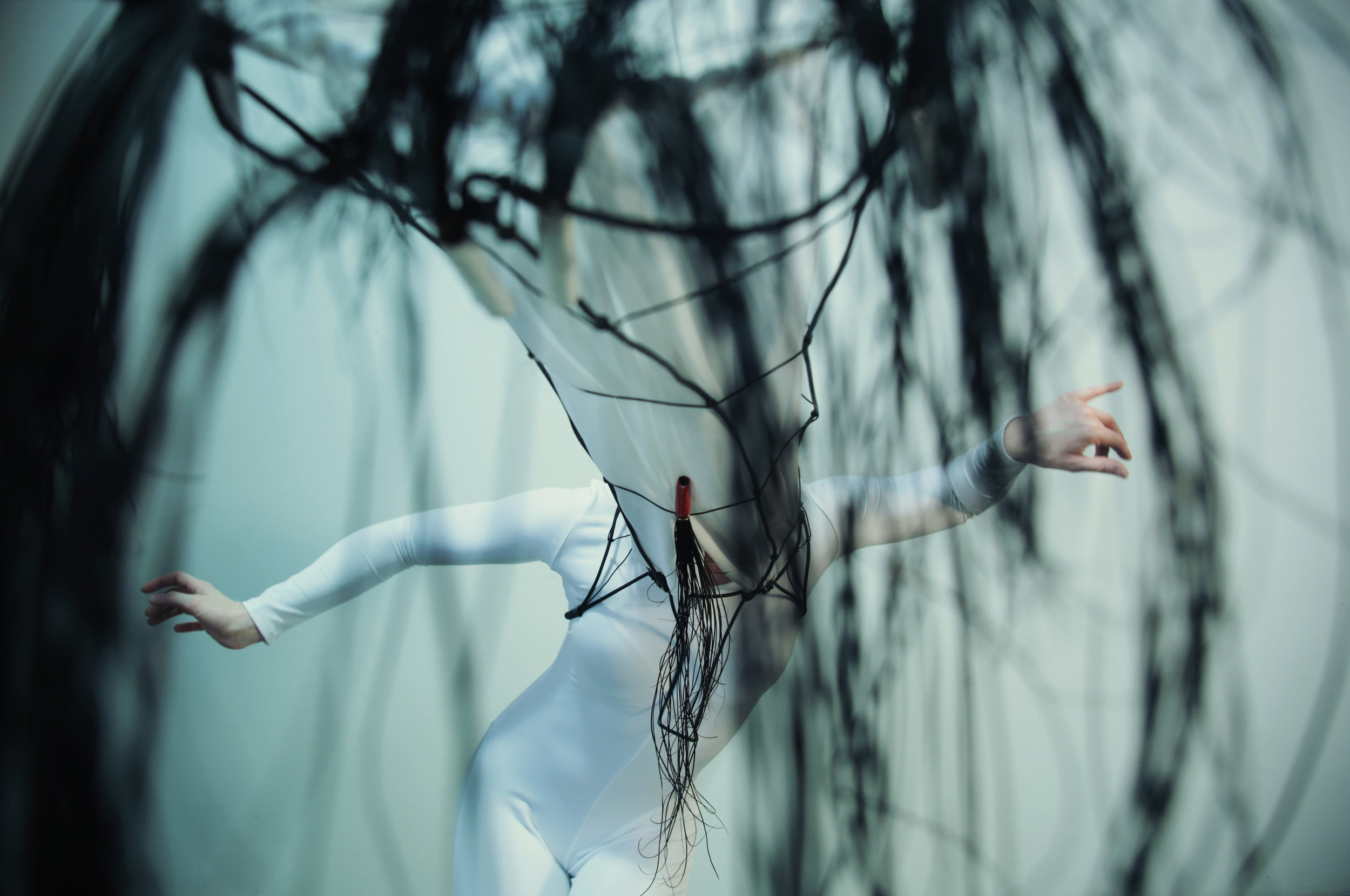 Water Ballet