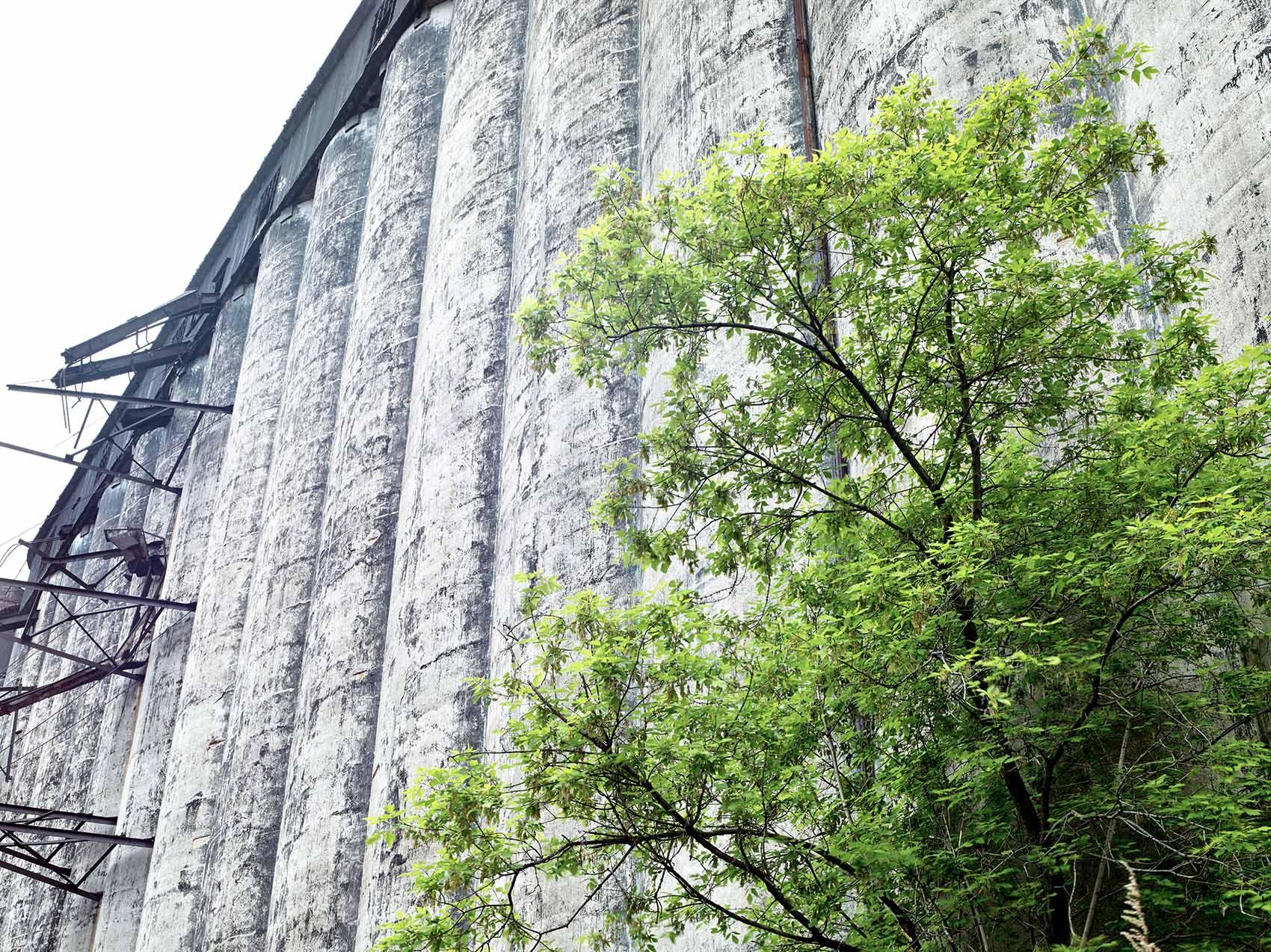abandoned grain silo Concrete Central Elevator