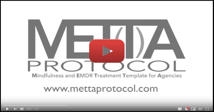 METTA Promo Video.jpg