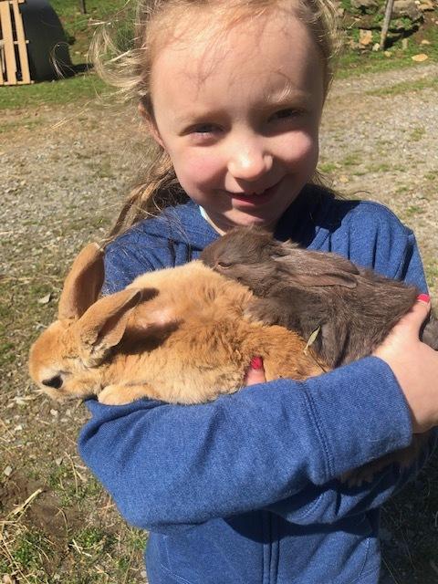 bunnies and gwendy.jpg