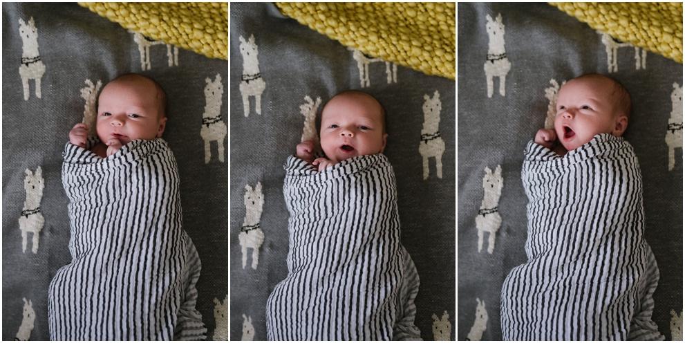 Calgary_Family_Photography_Newborn_Baby_Hart_2018_Blog_0008.jpg