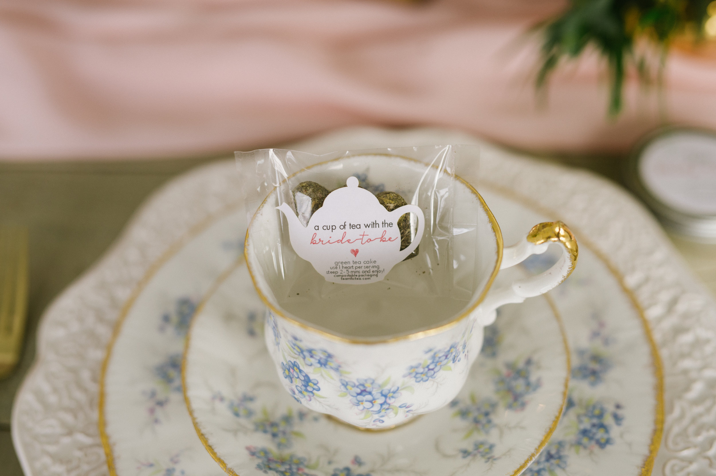 Calgary_Wedding_Photography_Spruce_Meadows_Bridal_Tea_2018_HR023.jpg