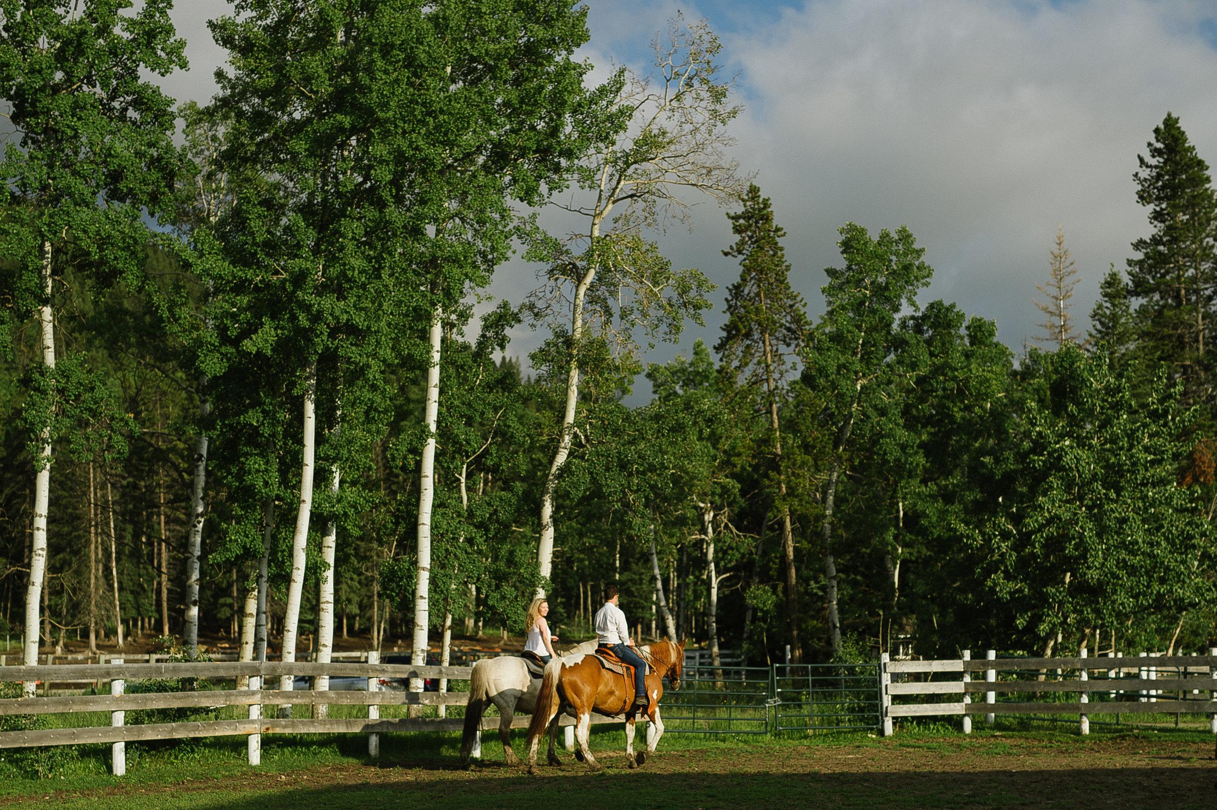 Calgary_Wedding_Photography_Rachel_kent_Christy_D_Swanberg_Photography_HR093.jpg