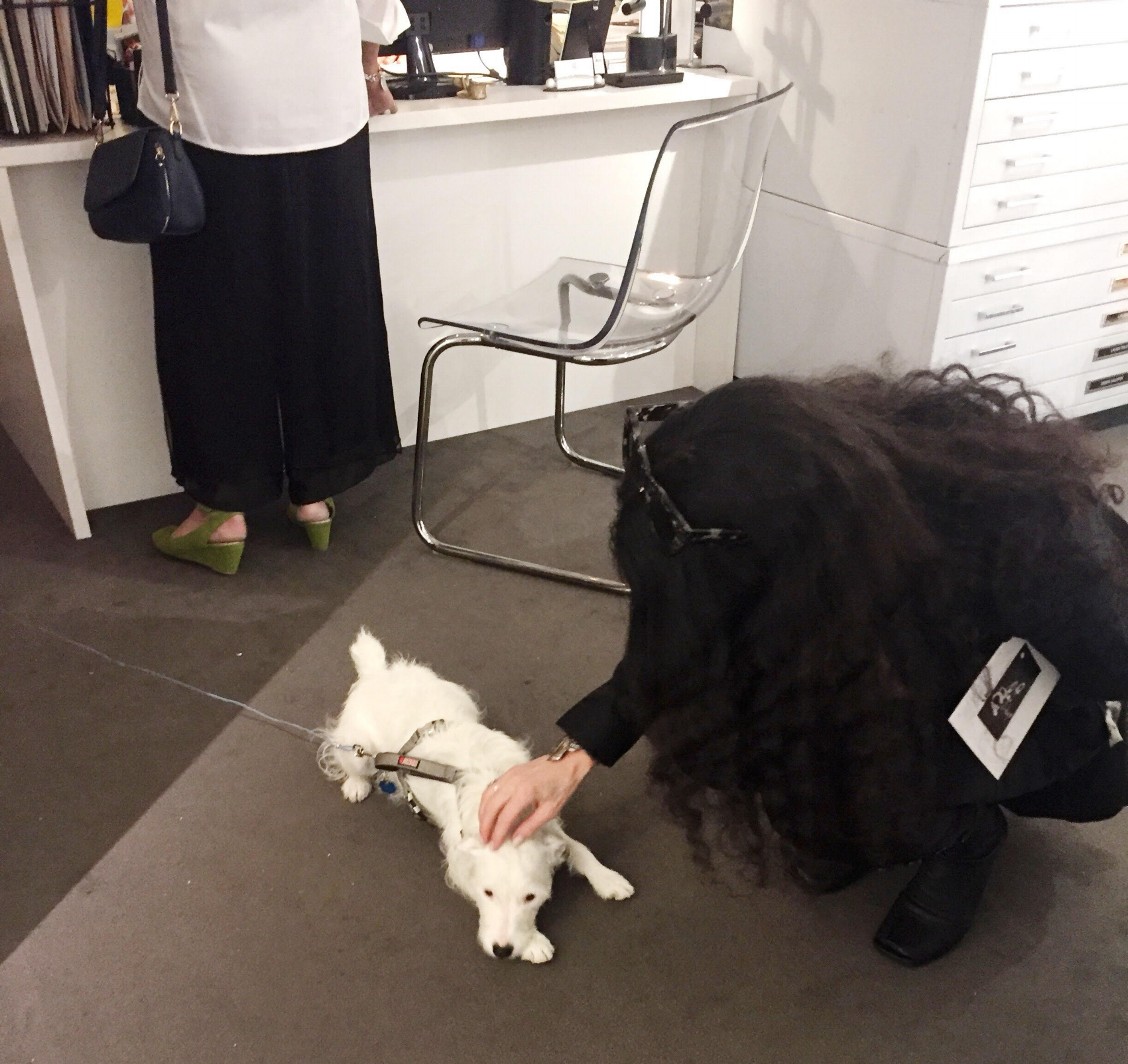 Danette and the Gallery Puppy