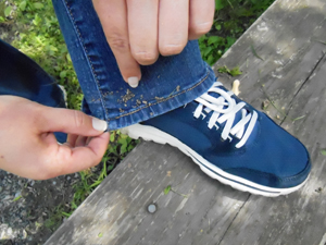 Seeds on Clothes.jpg